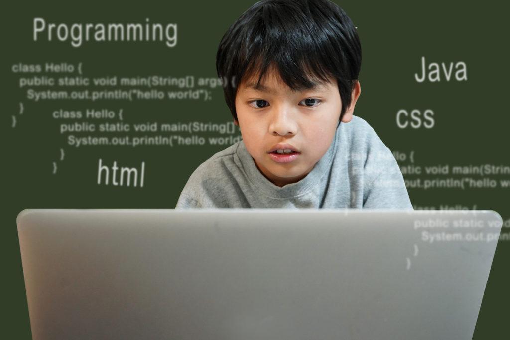 プログラミング学習者